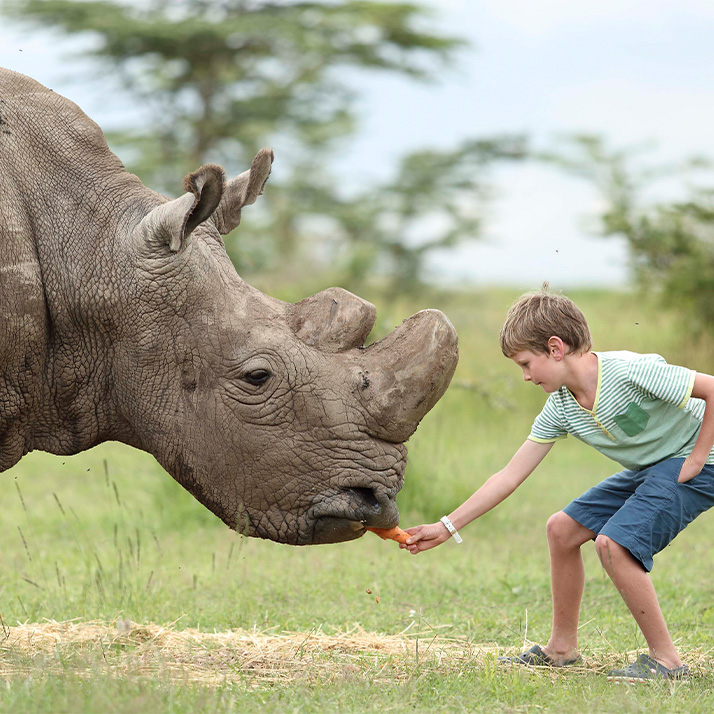 Conservation initiatives in Kenya