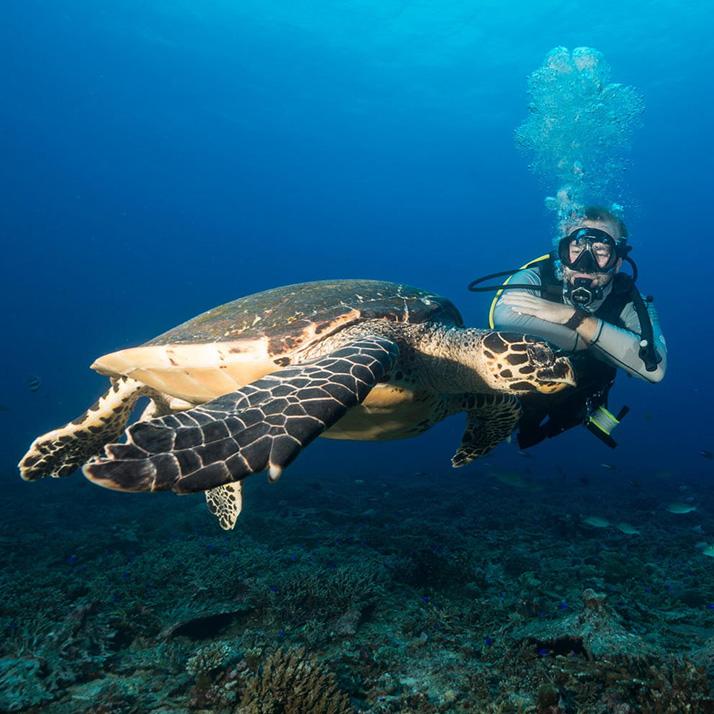 Diving in the Indian Ocean Islands
