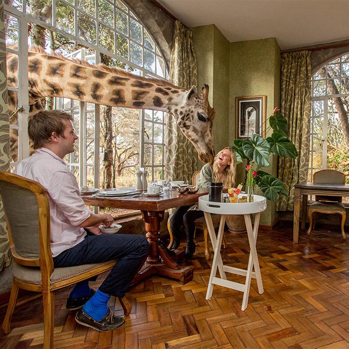 Giraffe Manor in Kenya Nairobi