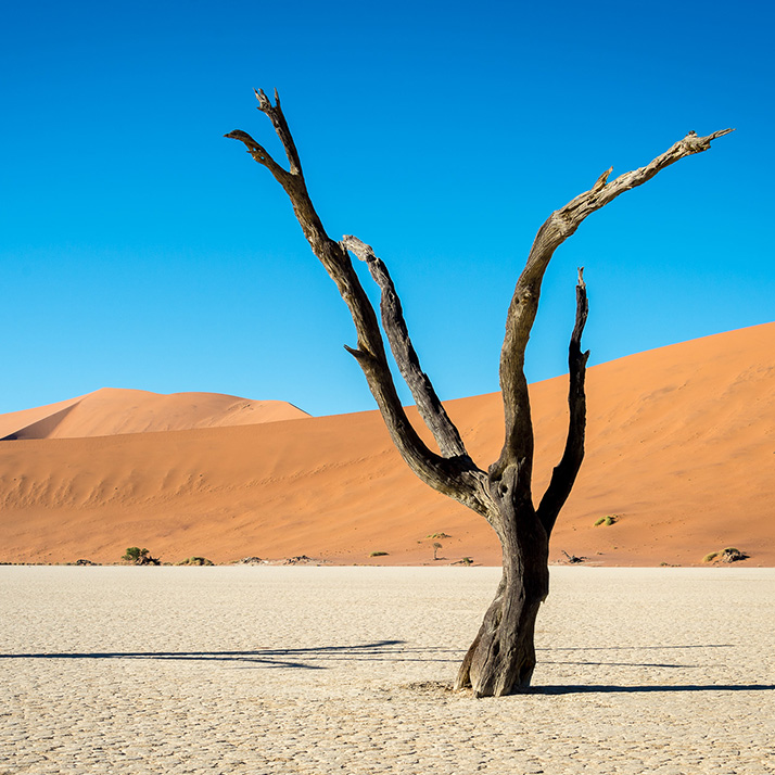The Sossusvlei Desert of Namibia