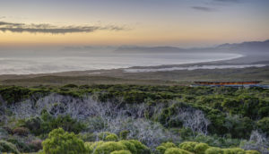 Grootbos Nature Reserve in South Africa